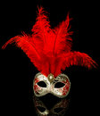 Venetian mask isolated on black Stock Photos