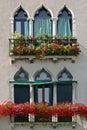 Venetian Windows Stock Photo
