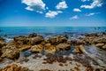 Venice beach ocean Royalty Free Stock Photo