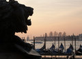 Venice evening black silhouette of lion statue head on lagoon and gondolas sunset view background Royalty Free Stock Photography