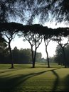 Venice golf club in Royalty Free Stock Photo