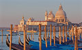 Venice santa maria della salute church and gondolas in morning light Stock Photos