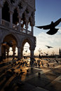 Venice sunrise Royalty Free Stock Image
