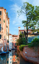 Venice view with tree Royalty Free Stock Photos