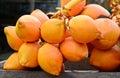 Vente du roi coconuts display for sur la petite rue dans malwana Photographie stock