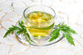 Verbena officinalis leaves and herbal tea or infusion in a clear glass cup saucer made from the plant used as a Royalty Free Stock Image