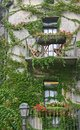 Verdant balconies ivy clings to stucco walls around two decorative Royalty Free Stock Photo