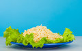 Vermicelli and lettuce Royalty Free Stock Images