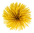 Vermicelli spaghetti, pasta from durum wheat. Isolated Royalty Free Stock Photo