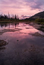 Vermilion lakes - Banff national park Royalty Free Stock Photo
