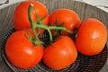 Verse tomaten op een bord met waterdruppels Royalty Free Stock Image