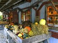 Rustic New England Autumn Harvest Pumpkin Outdoor Display Royalty Free Stock Photo