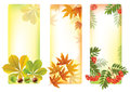 Vertical autumn banners contains transparent objects eps Royalty Free Stock Image