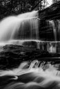 Vertical black and white image of Onondaga Falls, in  Ricketts Glen State Park Royalty Free Stock Photo