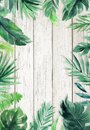 Woodgrain textured summer background with natural leaves border