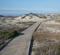 Vertical of empty boardwalk curves through a sandy beach Royalty Free Stock Image