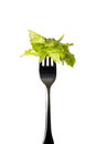 Vertical fork with salad in front of white background Royalty Free Stock Images