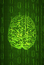 Vertical format background numbers and brain sketch, abstract VECTOR in green color.