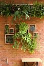 Vertical Garden and Dining Table Royalty Free Stock Photo