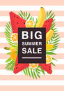 Vertical poster on big summer sale theme. Bright promotional flyer with different fruits and palm leaves. Colorful