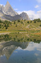 Vertical reflection of Aiguille noire Royalty Free Stock Photos