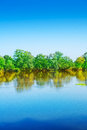Vertical Riverscape
