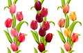 Vertical seamless patterns with tulips Royalty Free Stock Photos