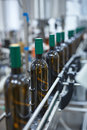 Vertical shot of a row of glass wine bottles moving by conveyor Royalty Free Stock Photo