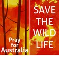 A vertical vector image for a smartphone with a fire, a text Save the wild life. Environment protection illustration. Royalty Free Stock Photo