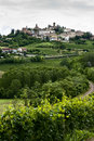 Vertical of Vineyards & Town in Piedmont, Italy Stock Photos
