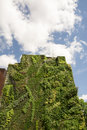 Vertical wall garden in Madrid, Spain Royalty Free Stock Photo