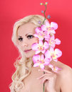 Very beautiful girl with orchid flowers on red Royalty Free Stock Photography