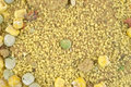 Very close view dehydrated couscous seasoning dried vegetables Royalty Free Stock Photography