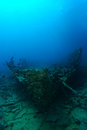 Very old ship wreck from 1800`s inside the reef verticle Royalty Free Stock Photo