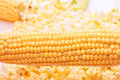 Very tasty fresh corn and popcorn Royalty Free Stock Photos
