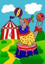 Verzegel het circus Royalty-vrije Stock Foto's