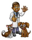 Vet with Pet Cat and Dog Cartoon Characters Royalty Free Stock Photo