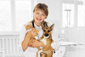 Vet and puppy and kitten in clinic smiling Stock Images
