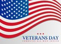 Veterans Day USA Flag Illustra...