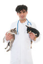 Veterinarian with cat and dog handsome isolated over white background Stock Photos