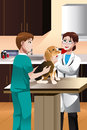 Veterinarian examining a cute dog vector illustration of Royalty Free Stock Photos