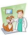 Veterinary Stock Image