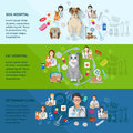 Veterinary banner set clinic flat horizontal with dog and cat hospital vector illustration Stock Photography
