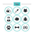 Veterinary, pets icons. Paw, syringe and bone.