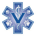 Veterinär emergency medical symbol Royaltyfria Foton