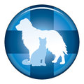 Veterinär medical symbol button Arkivbilder