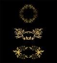 Vetor lacy vintage floral design elements Imagens de Stock