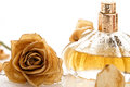 Vial of perfume and dry rose flower Royalty Free Stock Photo
