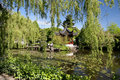 Vibrant Chinese Garden Stock Photography