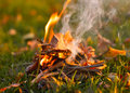 Vibrant outdoor background lighting fire on green grass Royalty Free Stock Photos